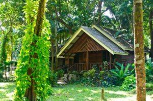 Khao Sok Forest Cottage