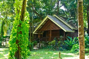accommodation khao sok national park
