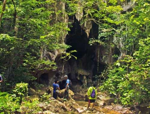 Khao Sok Park Cave Hike