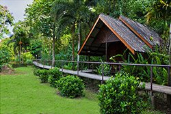 A Riverside Cottage: deluxe Khao Sok Accommodation