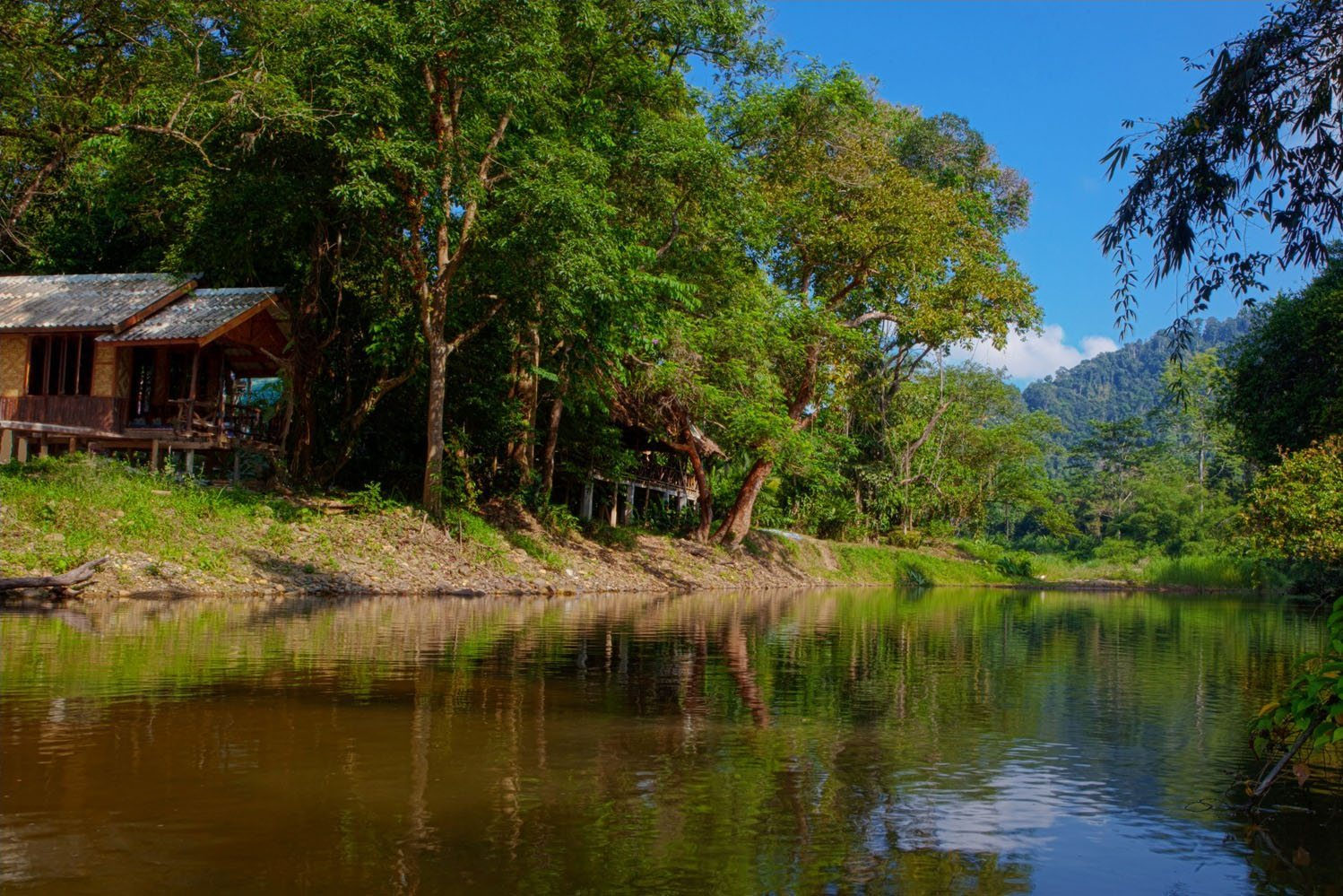 Khao Sok Riverside Cottages Resort
