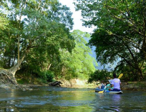 Khao Sok Canoe Trip – Sabai Sabai