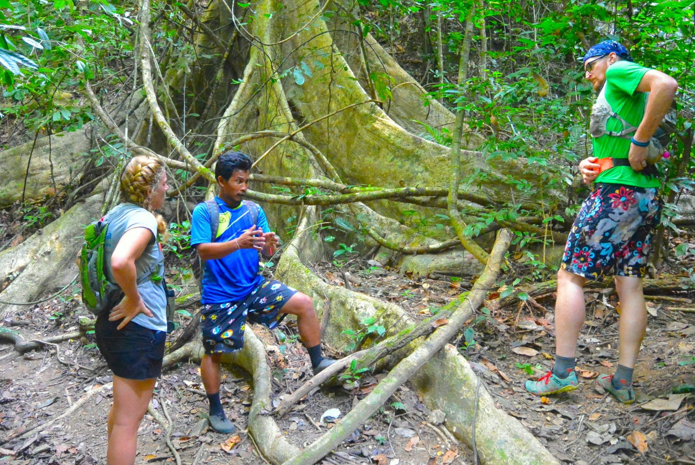 Khao Sok jungle trekking
