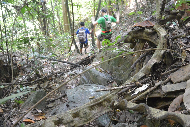 Khao Sok jungle trekking descent