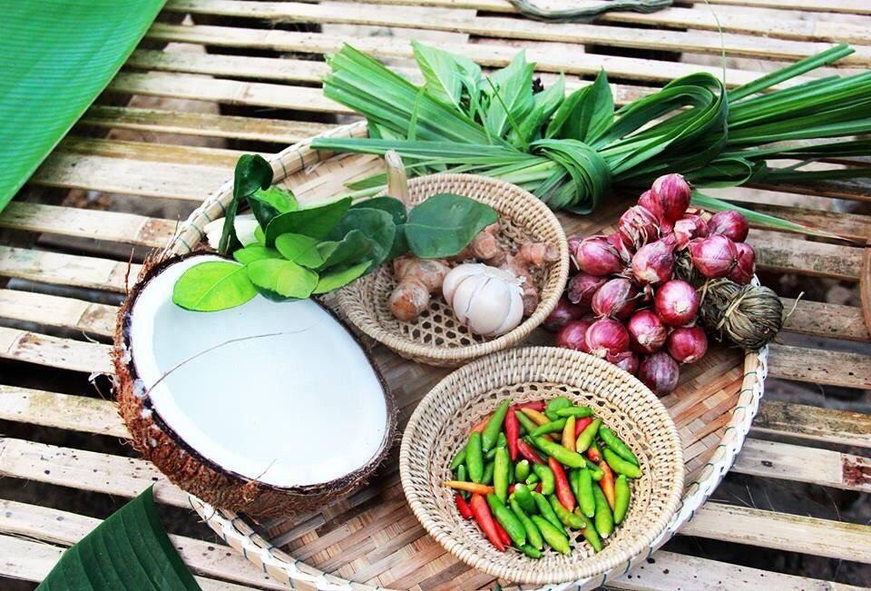 Khao Sok jungle cooking herbs