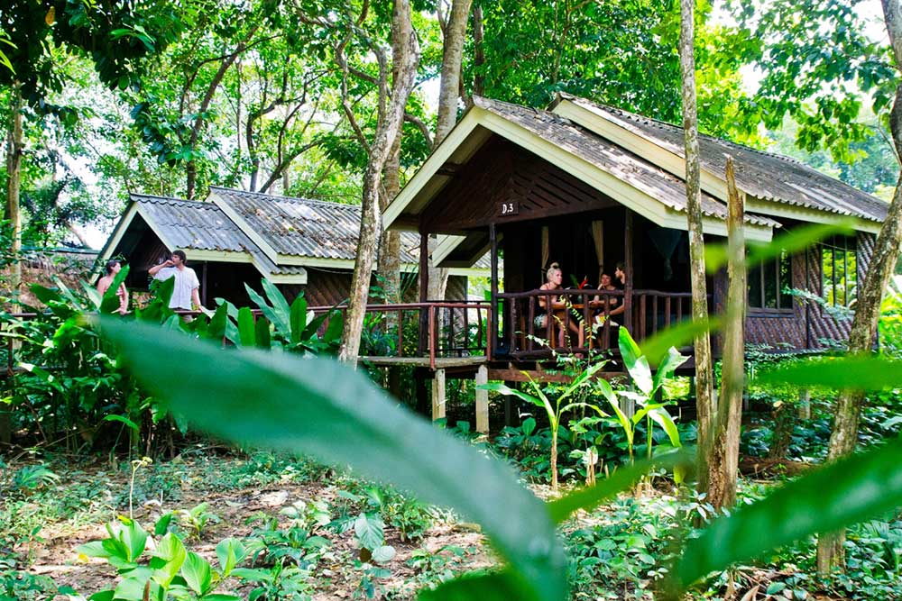 Khao Sok accommodation Forest Room Exterior