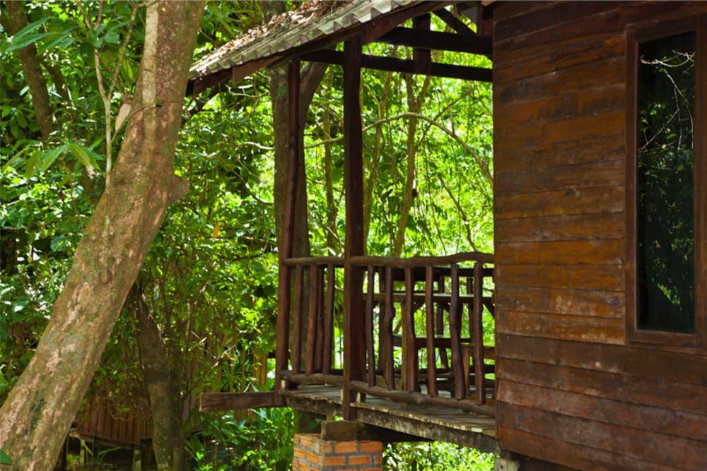 Khao Sok Accommodation Forest room with balcony