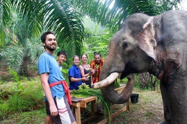 Khao Sok Thailand Elephant Sanctuary