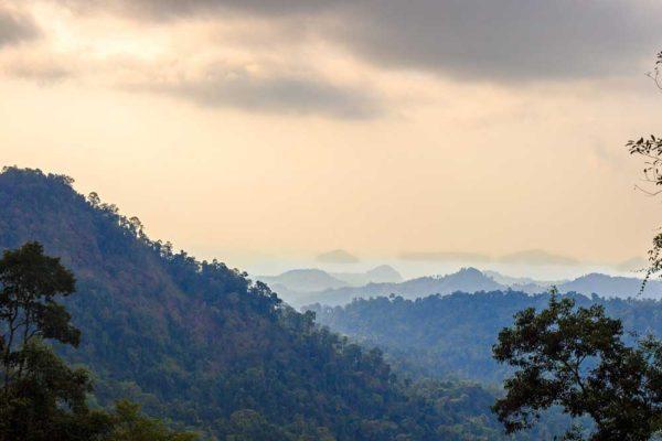 Khao Sok Trekking Mountain View