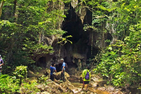 Khao Sok Trekking Cave Hike