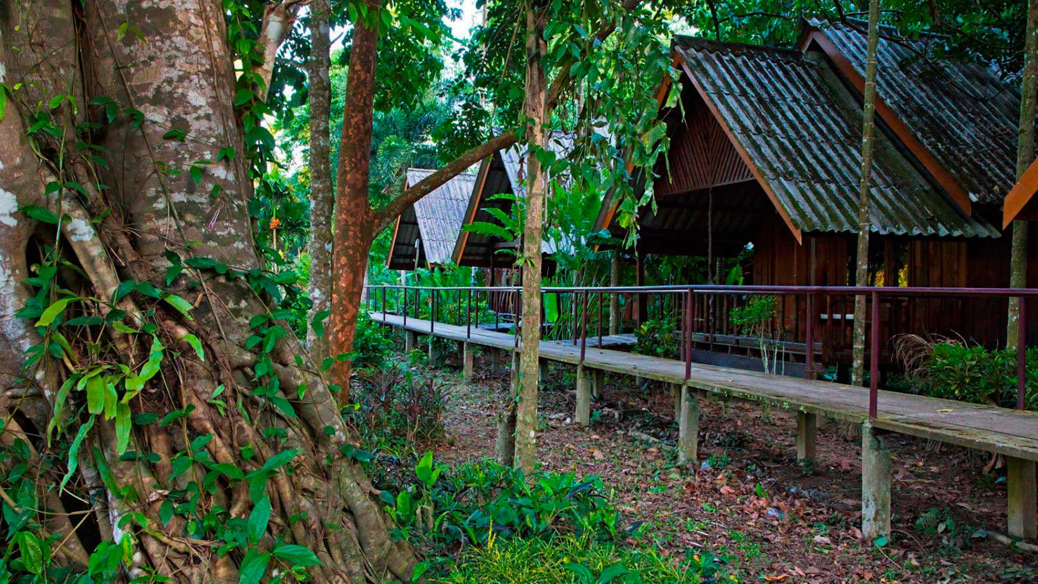 Khao Sok riverside accommodation exterior