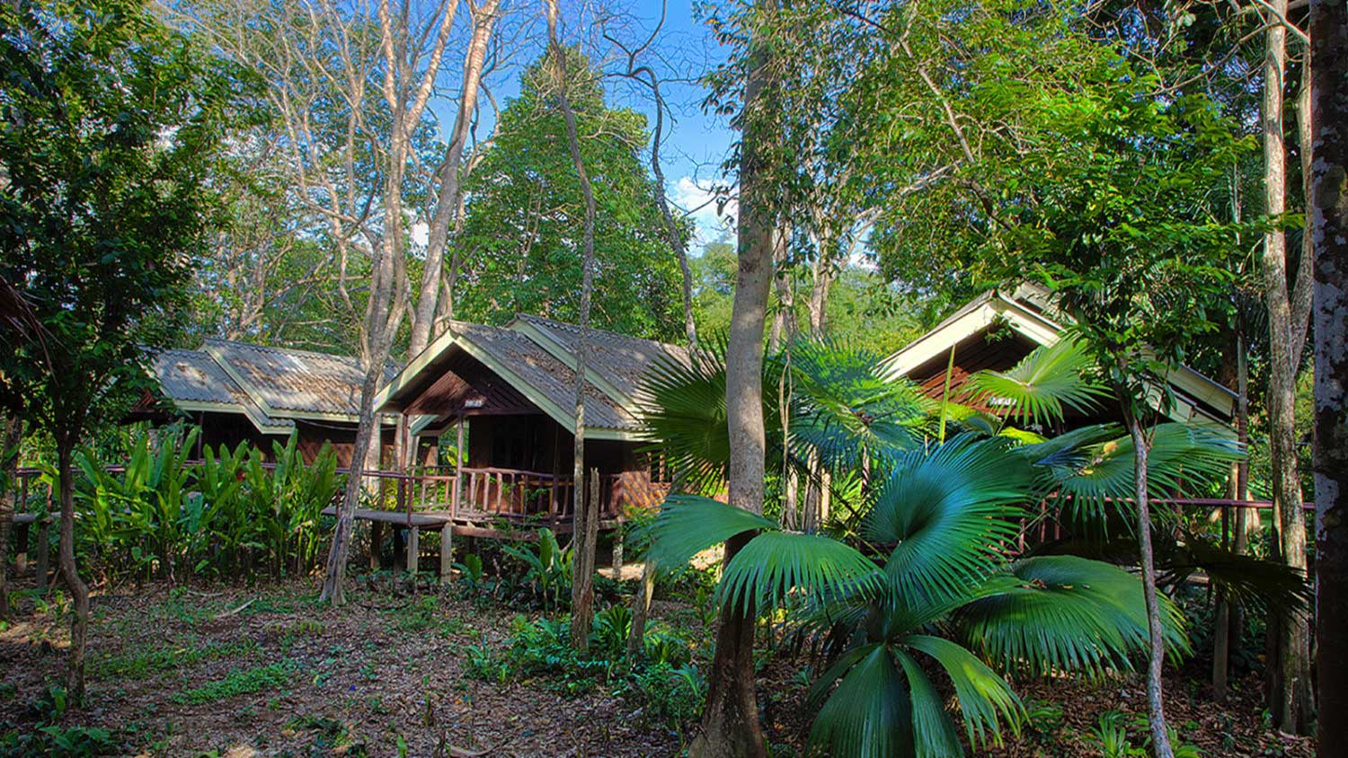Khao Sok Rainforest Accommodation Room exteriors