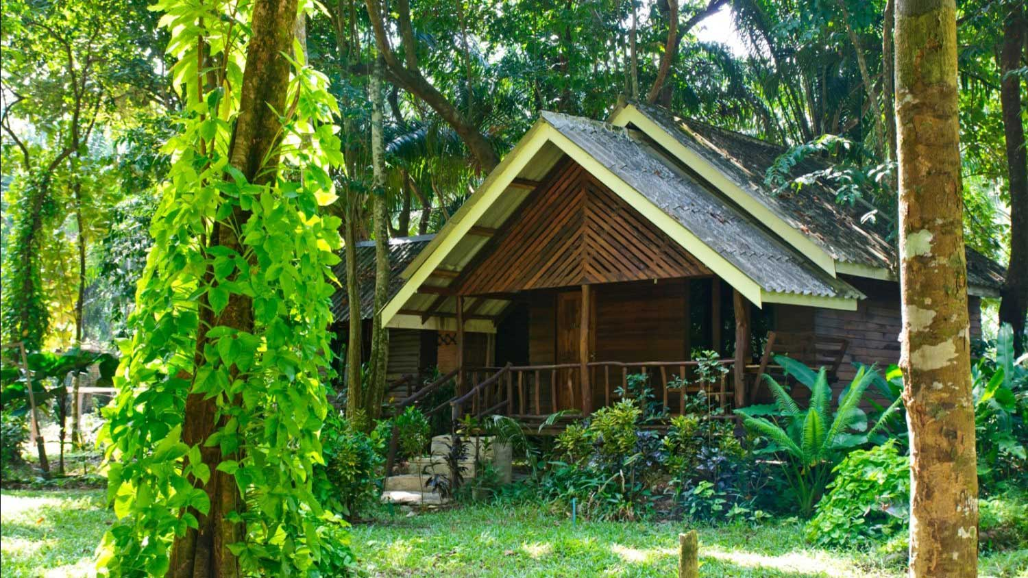 Khao Sok accommodation