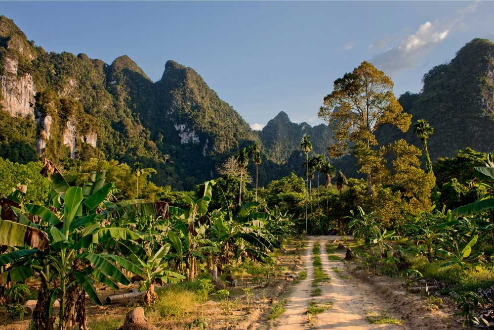 How to get to Khao Sok