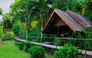 Khao Sok accommodation