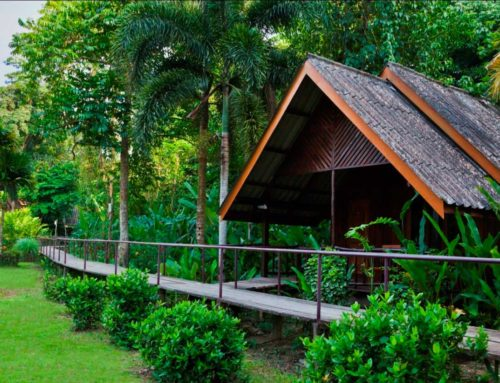 Finding a perfect Khao Sok bungalow