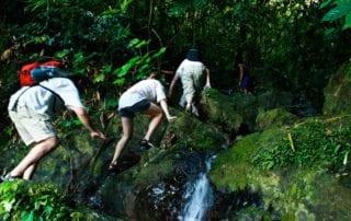Hikes in Khao Sok National Park