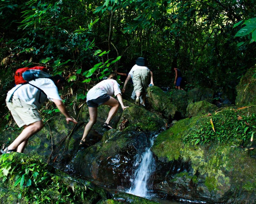 Khao Sok National Park Top Hikes- Overnight camping
