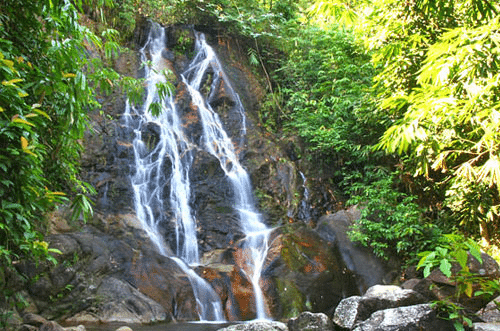 Khao Sok National Park Top Hikes- Wing Hin Waterfall