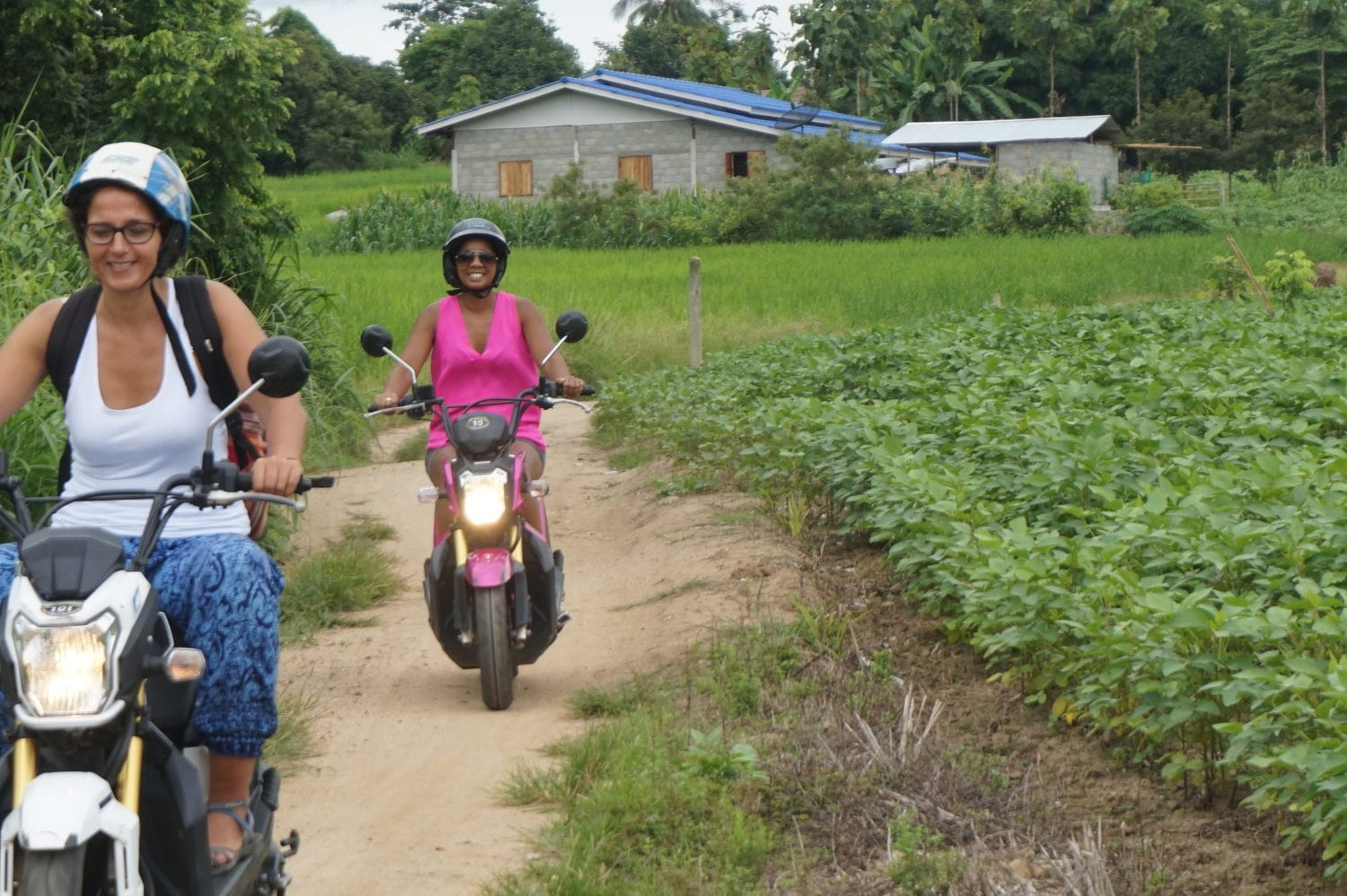 Things to do in Khao Sok driving a motorcycle