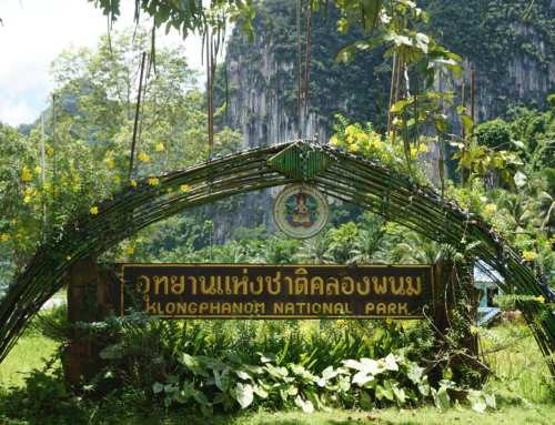 Gateway to the undiscovered: Khlong Phanom National Park