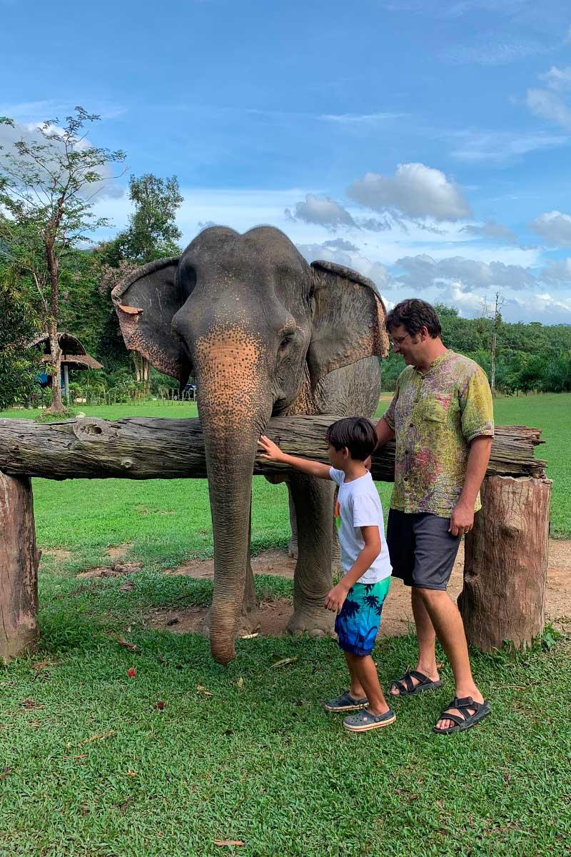 National Park Khao Sok elephant experience