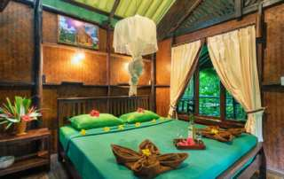 khao sok national park hotels
