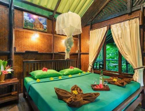 Where to stay in Khao Sok? The best Khao Sok National Park Hotels