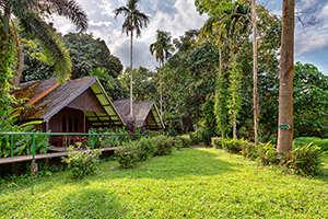 Khao Sok National Park Resort